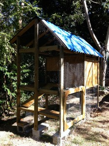 Finished Chicken Coop